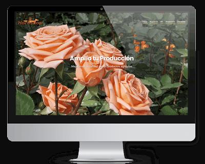 diseño-web-latitudseo-portafolio